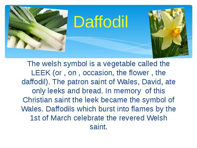 The welsh symbol is a vegetable called the LEEK (or , on , occasion, the flow...