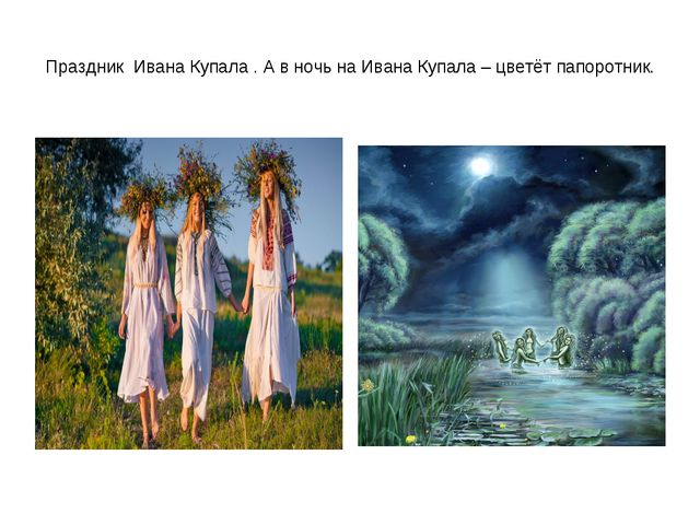 Праздник Ивана Купала . А в ночь на Ивана Купала – цветёт папоротник.