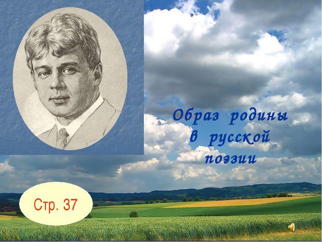 Образ родины в русской поэзии Стр. 37