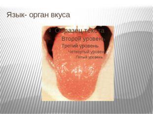 Язык- орган вкуса