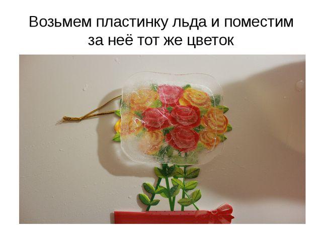 Возьмем пластинку льда и поместим за неё тот же цветок