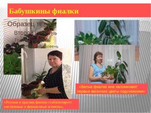Бабушкины фиалки «Розовая и красная фиалки стабилизирует умственные и финансо