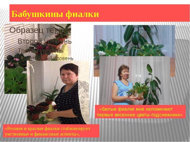 Бабушкины фиалки «Розовая и красная фиалки стабилизирует умственные и финансо...
