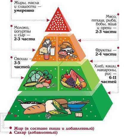 http://mouoosh7.rusedu.net/gallery/2979/Piramida.jpg