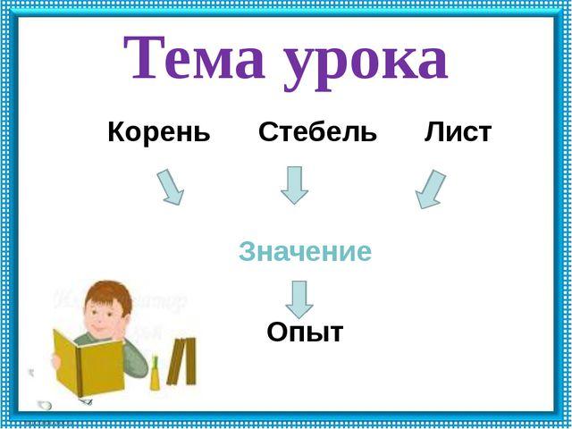 Тема урока Корень Стебель Лист Значение Опыт