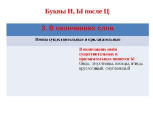 Буквы И, Ы после Ц 3. В окончаниях слов Имена существительные и прилагательн