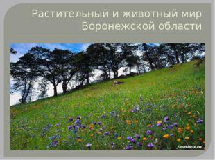Растительный и животный мир Воронежской области