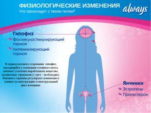 ФИЗИОЛОГИЧЕСКИЕ ИЗМЕНЕНИЯ Что происходит с твоим телом? В период полового соз