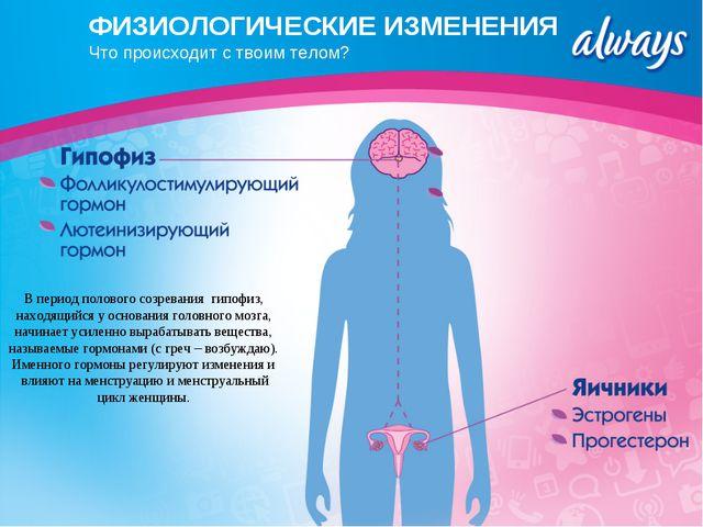 ФИЗИОЛОГИЧЕСКИЕ ИЗМЕНЕНИЯ Что происходит с твоим телом? В период полового соз...