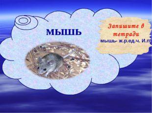 мышь Запишите в тетради мышь- ж.р.ед.ч. И.п.
