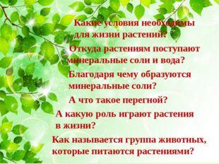 Какие условия необходимы для жизни растений? Откуда растениям поступают минер
