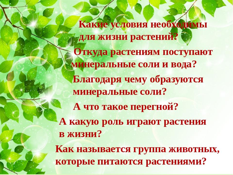 Какие условия необходимы для жизни растений? Откуда растениям поступают минер...