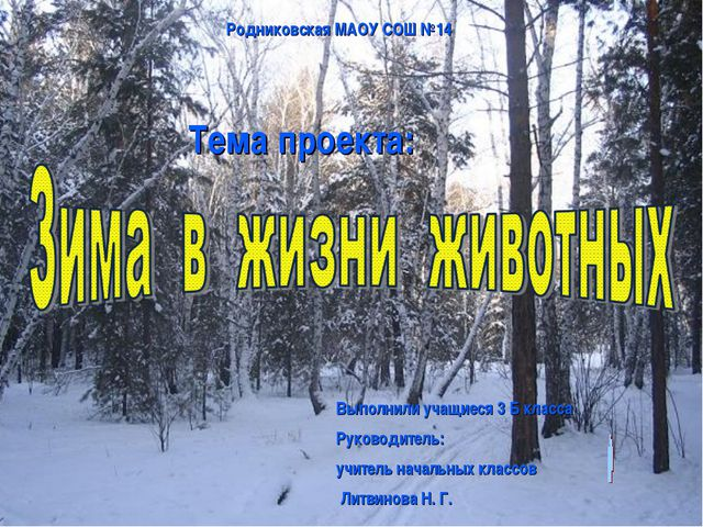 Тема проекта: Родниковская МАОУ СОШ №14 Выполнили учащиеся 3 Б класса Руковод...