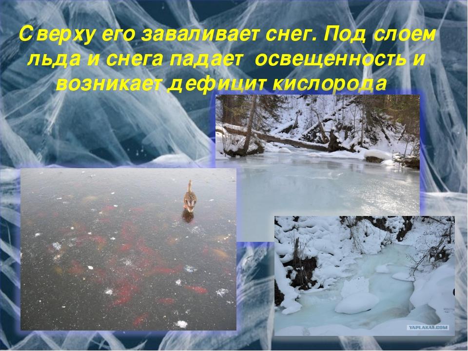 Сверху его заваливает снег. Под слоем льда и снега падает освещенность и возн...