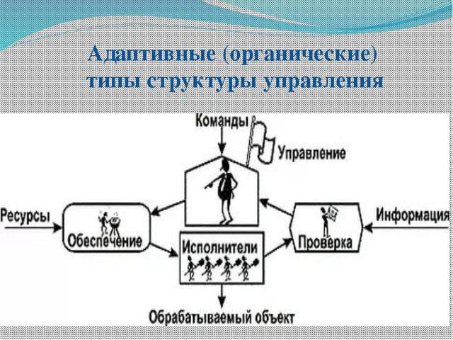Адаптивные (органические) типы структуры управления