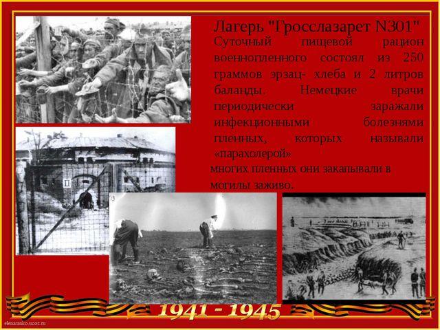 """Лагерь """"Гросслазарет N301"""" Суточный пищевой рацион военнопленного состоял из..."""