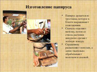 Изготовление папируса Папирус делается из тростника, которое в Египте выращив