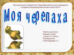 Работу выполнил Мажара Семен ученик 1А класса Руководитель Александрова С.Г.