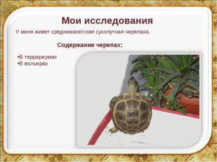 Мои исследования У меня живет среднеазиатская сухопутная черепаха. Содержание
