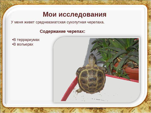 Мои исследования У меня живет среднеазиатская сухопутная черепаха. Содержание...