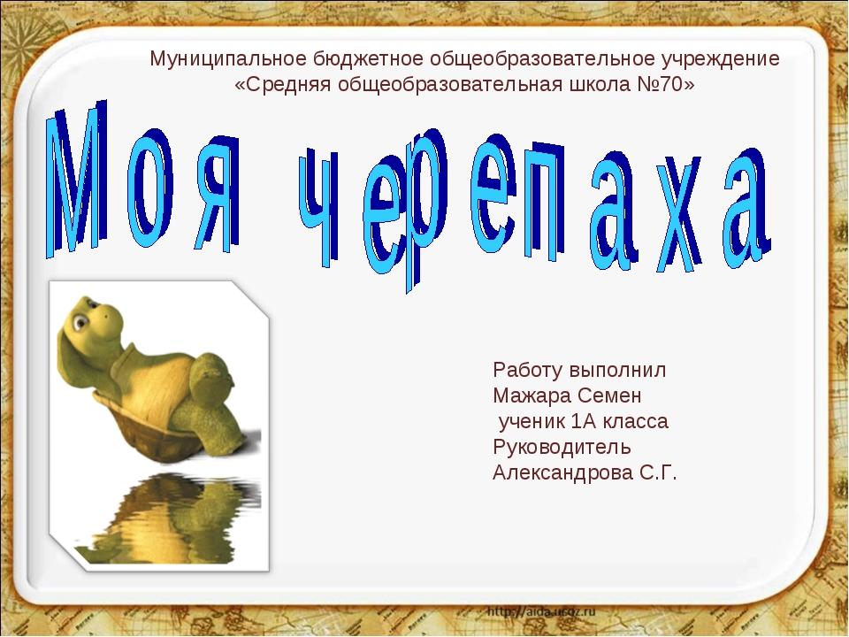 Работу выполнил Мажара Семен ученик 1А класса Руководитель Александрова С.Г....