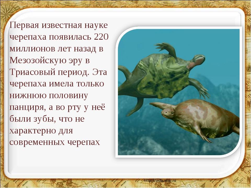 Первая известная науке черепаха появилась 220 миллионов лет назад в Мезозойск...
