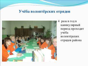 Учёба волонтёрских отрядов 4 раза в год в каникулярный период проходит учёба