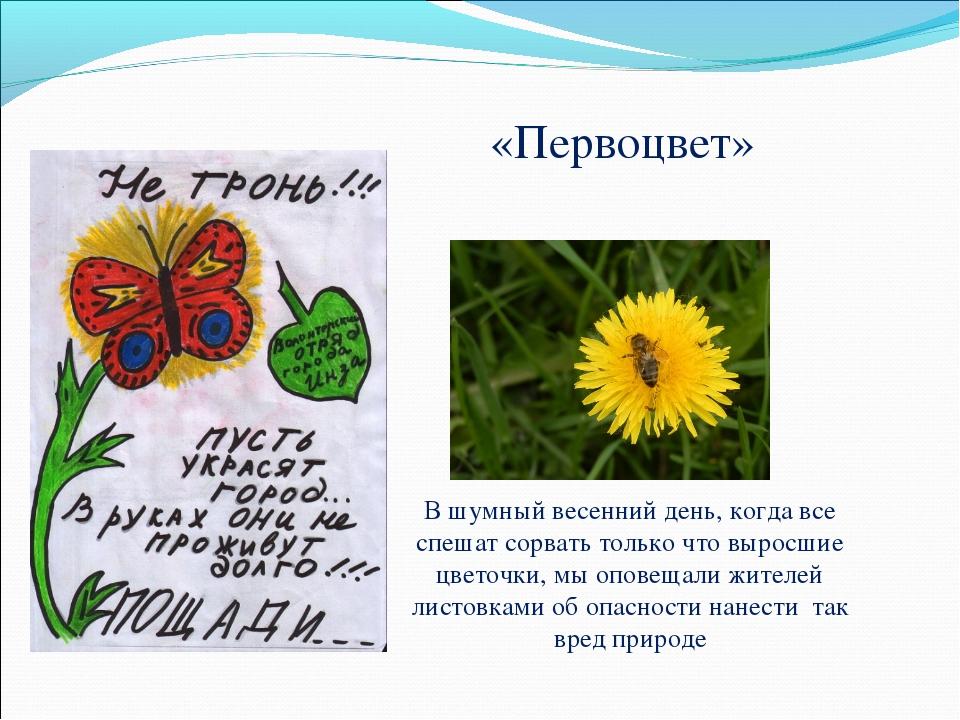 «Первоцвет» В шумный весенний день, когда все спешат сорвать только что вырос...