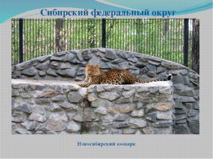 Сибирский федеральный округ Новосибирский зоопарк