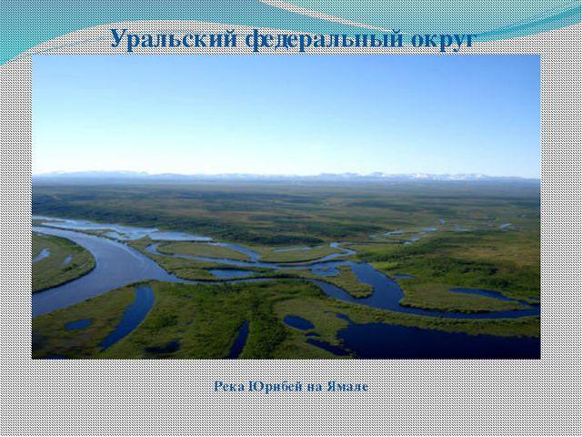 Уральский федеральный округ Река Юрибей на Ямале