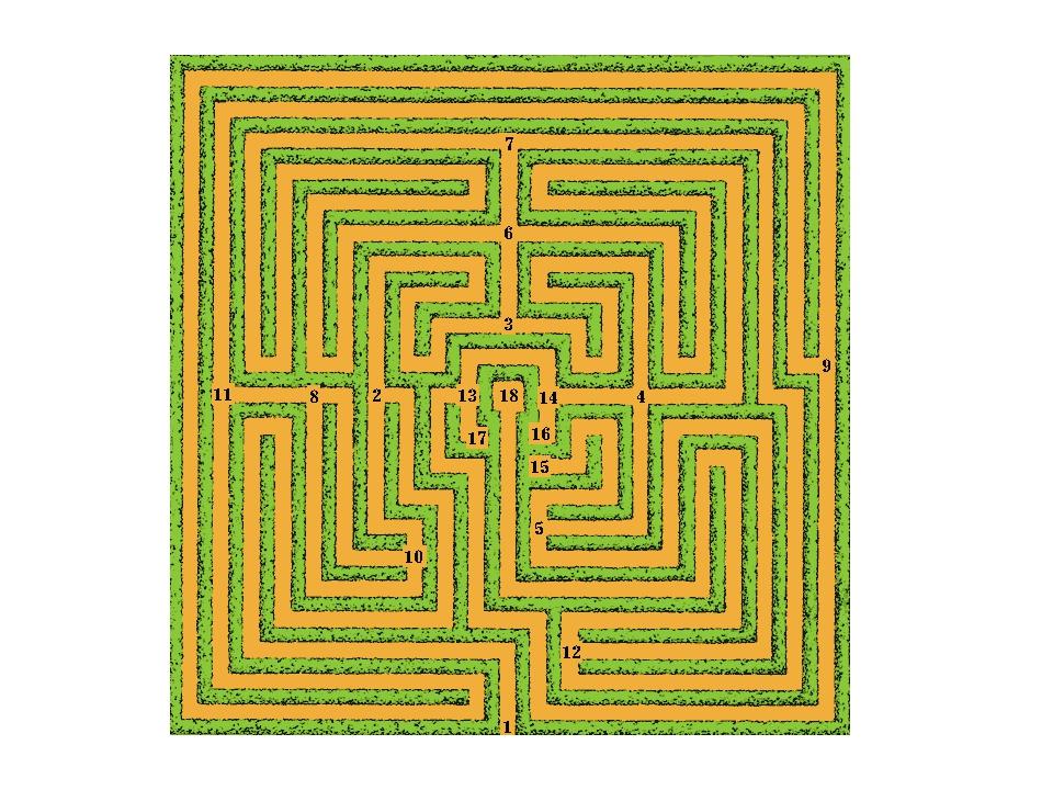 Вот многосвязный лабиринт.