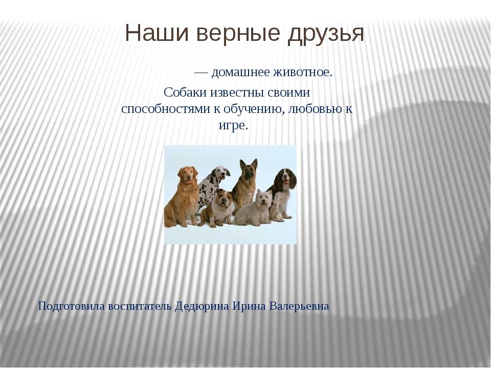 Наши верные друзья Подготовила воспитатель Дедюрина Ирина Валерьевна Соба́ка...