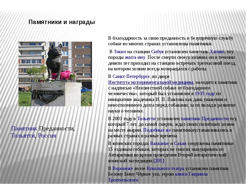 Памятники и награды Памятник Преданности,Тольятти,Россия В благодарность за...