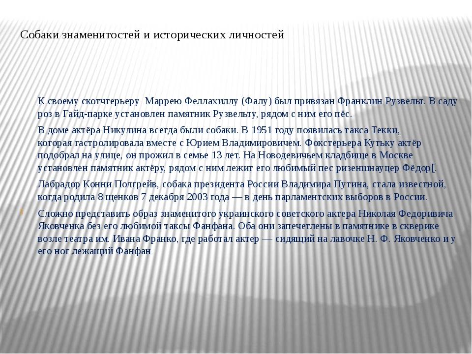 Собаки знаменитостей и исторических личностей К своему скотчтерьеру Маррею Фе...