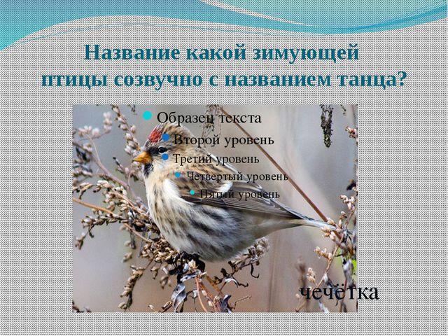 Название какой зимующей птицы созвучно с названием танца? чечётка