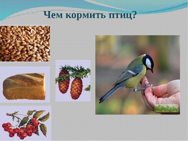Чем кормить птиц? .