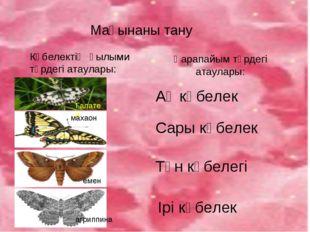 Мағынаны тану Көбелектің ғылыми түрдегі атаулары: Қарапайым түрдегі атаулары: