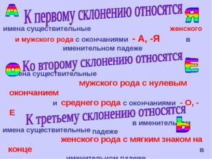 имена существительные женского и мужского рода с окончаниями - А, -Я в именит