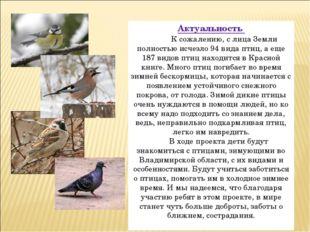 Актуальность К сожалению, с лица Земли полностью исчезло 94 вида птиц, а еще
