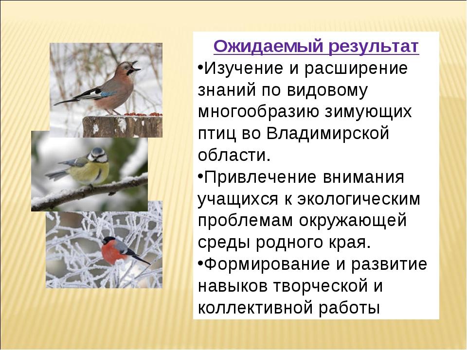 Ожидаемый результат Изучение и расширение знаний по видовому многообразию зим...