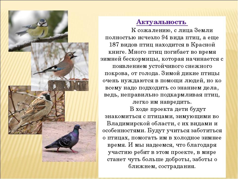 Актуальность К сожалению, с лица Земли полностью исчезло 94 вида птиц, а еще...