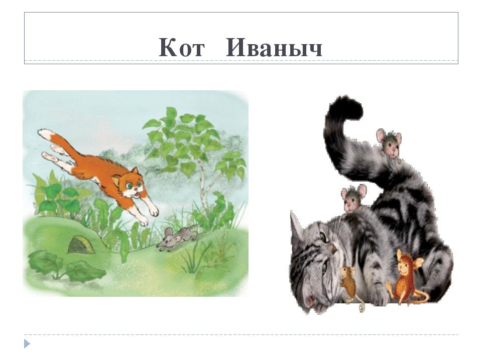 Кот Иваныч