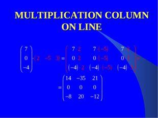 MULTIPLICATION COLUMN ON LINE