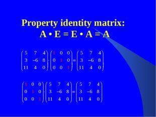 Property identity matrix: A • E = E • A = A