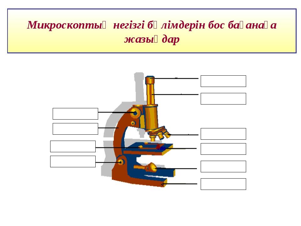 Микроскоптың негізгі бөлімдерін бос бағанаға жазыңдар