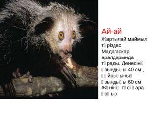 Ай-ай Жартылай маймыл тәріздес Мадагаскар аралдарында тұрады. Денесінің ұзынд