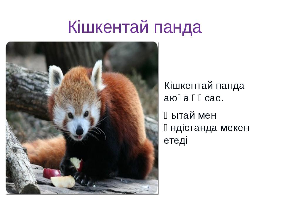 Кішкентай панда Кішкентай панда аюға ұқсас. Қытай мен Үндістанда мекен етеді