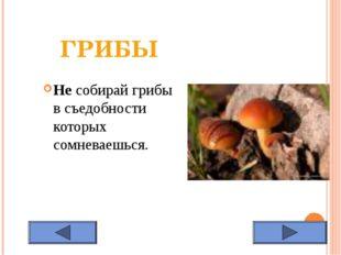 ГРИБЫ Не собирай грибы в съедобности которых сомневаешься.