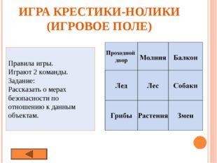 ИГРА КРЕСТИКИ-НОЛИКИ (ИГРОВОЕ ПОЛЕ) Правила игры. Играют 2 команды. Задание: