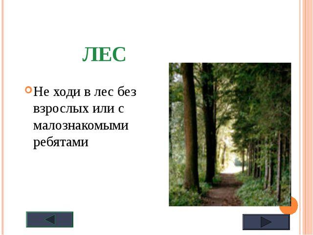 ЛЕС Не ходи в лес без взрослых или с малознакомыми ребятами